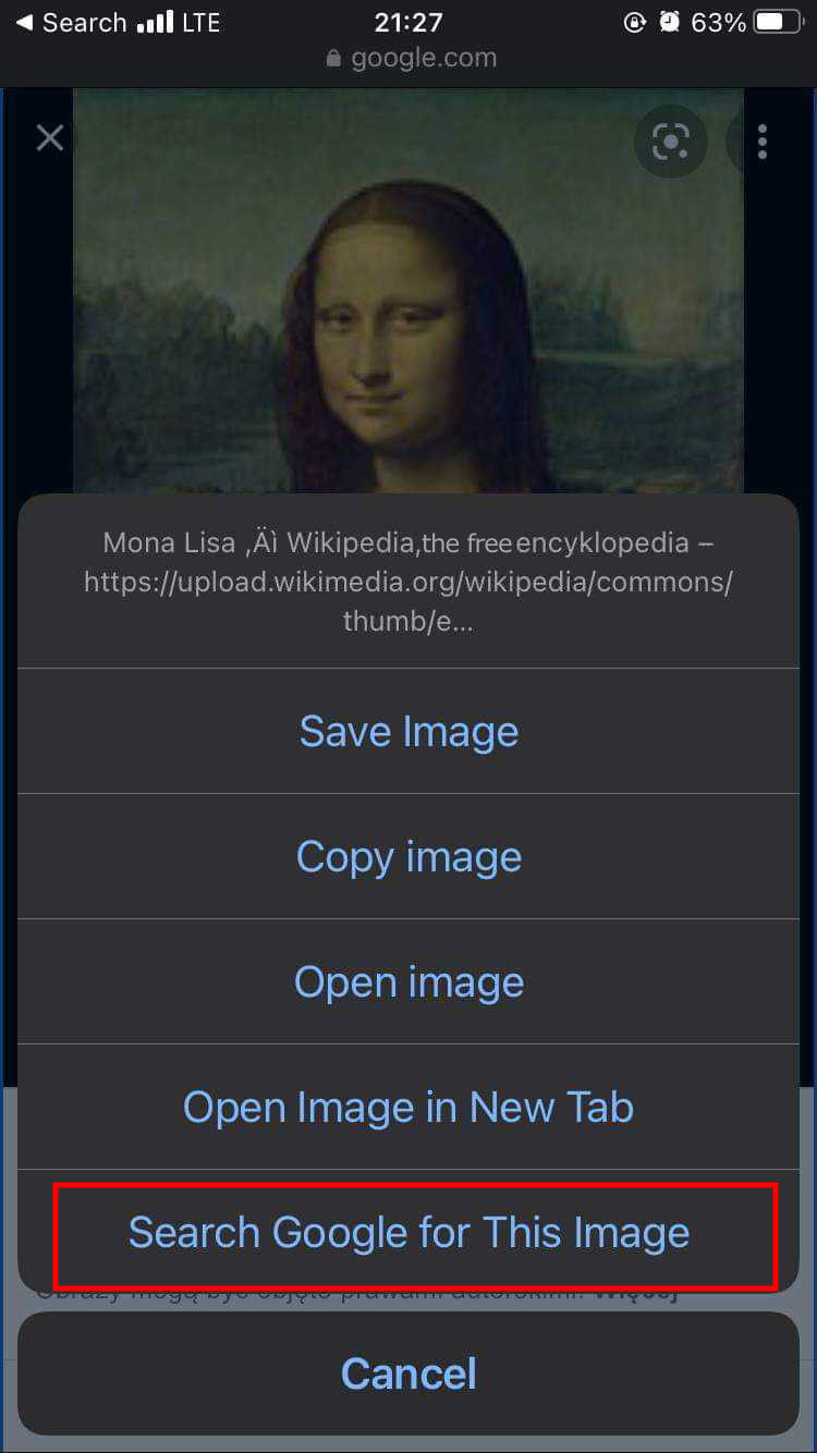 Reverse image search app iphone